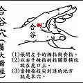 合谷(大腸)(手).jpg