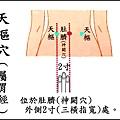 天樞(胃)(腹).jpg