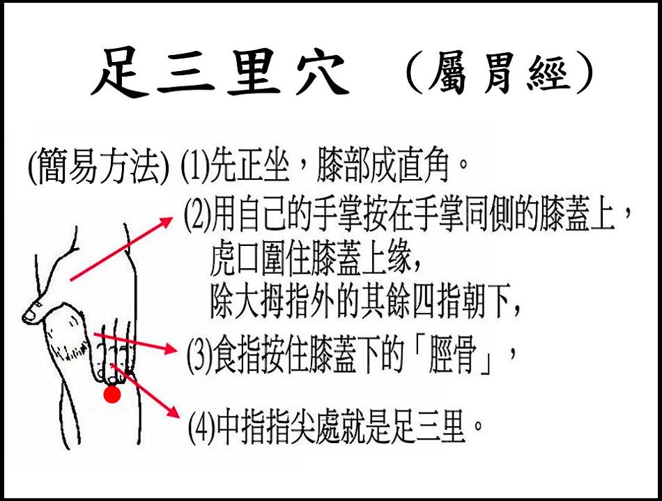 足三里(胃)(腳).jpg