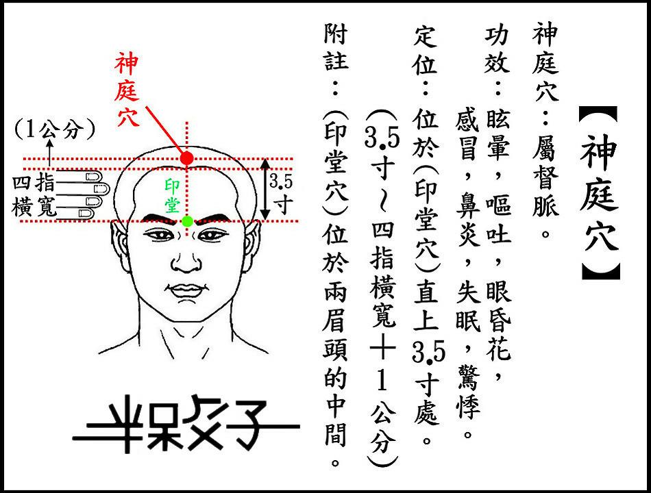 ●神庭穴(頭).jpg