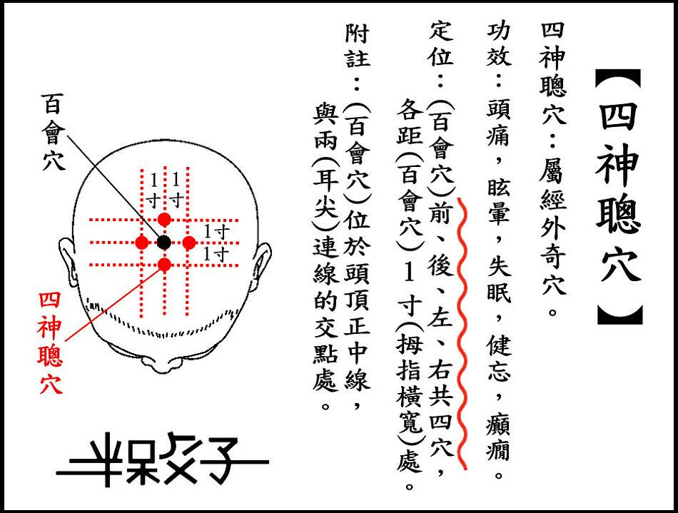 ●四神聰穴(頭).jpg