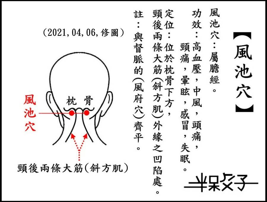 ●風池穴(頭)-1.jpg