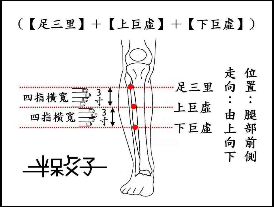 胃經(增文)-1-1.jpg