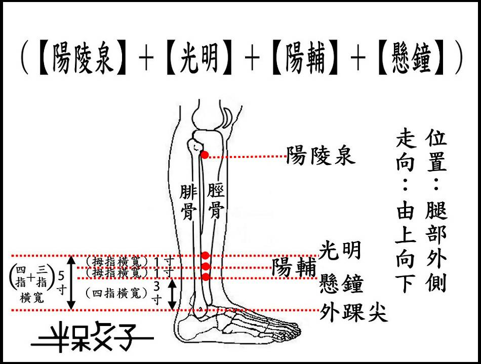 膽經(增文)-2.jpg