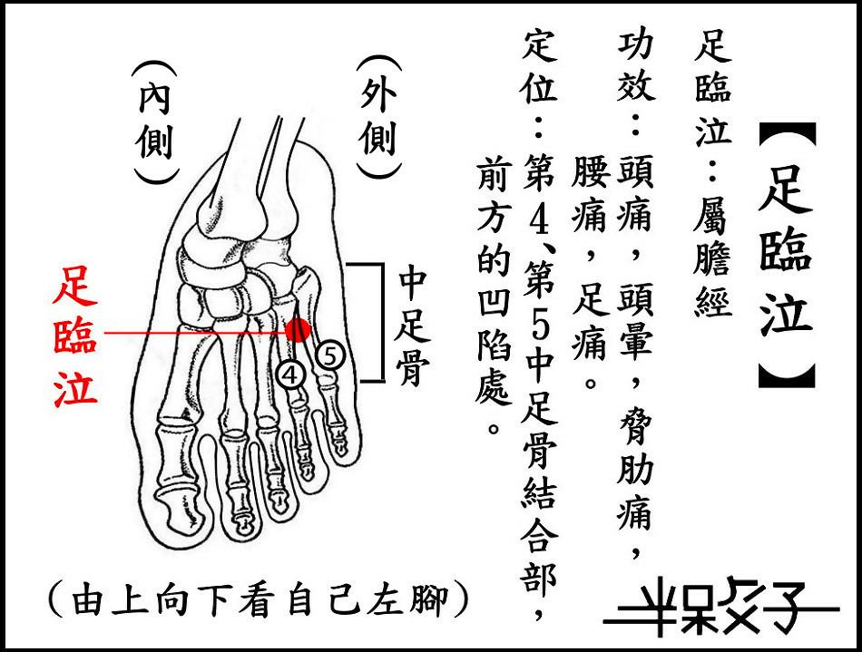 足臨泣-2.jpg
