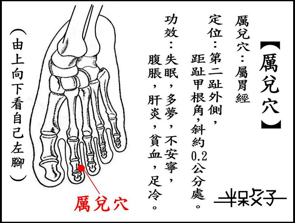 ●厲兌(胃).jpg
