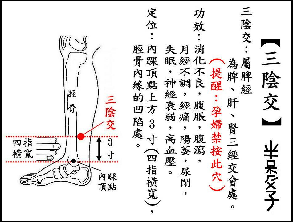 ●三陰交(脾).jpg