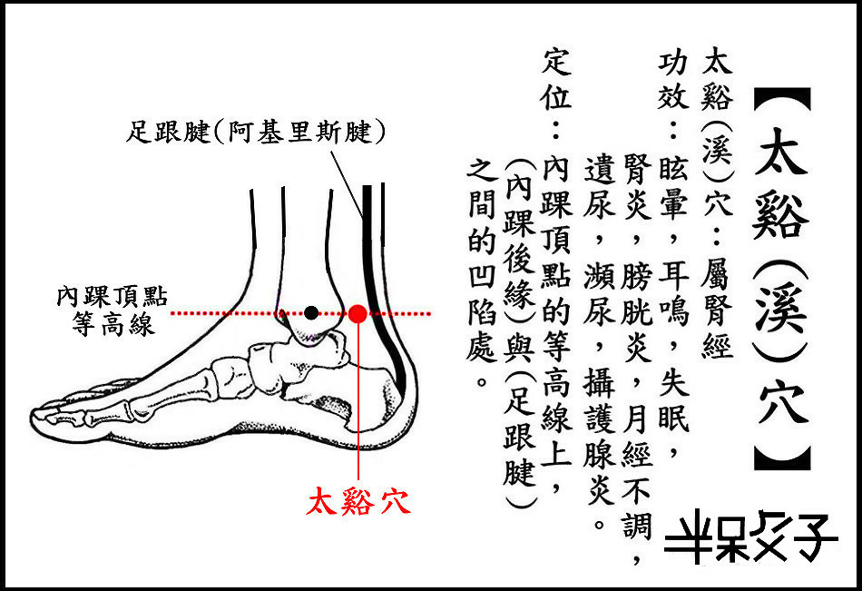 ●太谿穴(腎).jpg