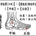 足部(3B)(腳面).jpg