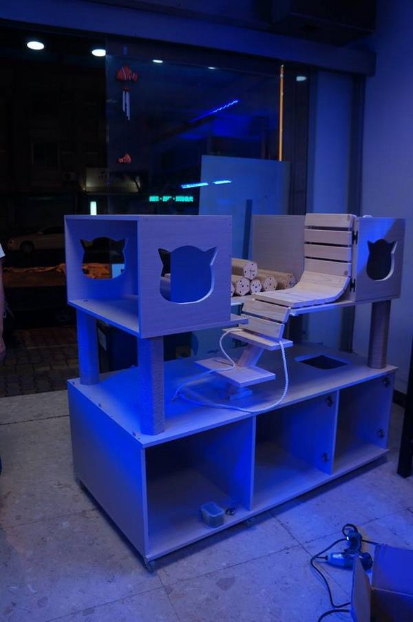 湛藍貓-貓櫃-2