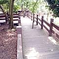 膠合樑11米木結構橋 (1)