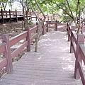 樹蔭散步道