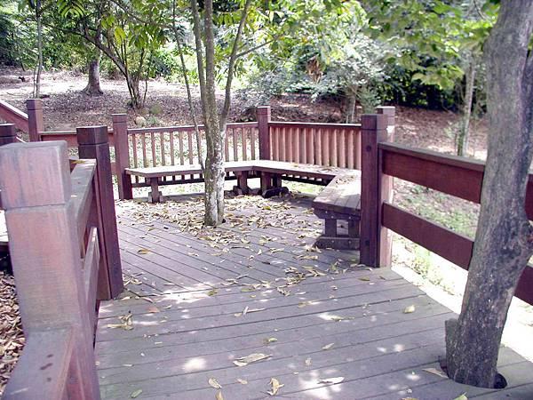 樹蔭散步道 (2)