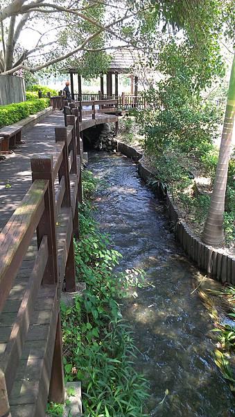 五張犁圳 親水公園 (10)