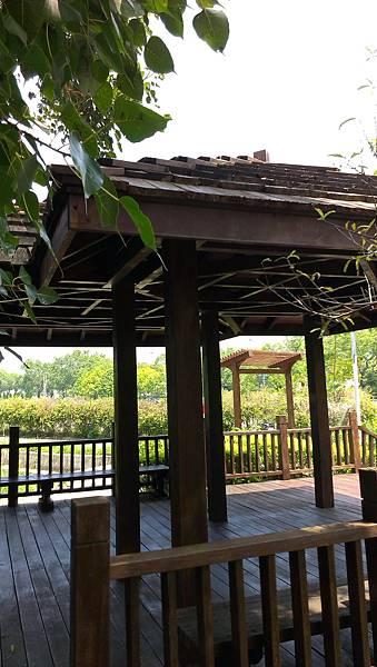 五張犁圳 親水公園 (15)