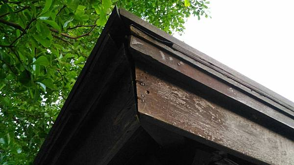 2樹林IPE案例--雙亭部分 --屋頂架構 (2).jpg