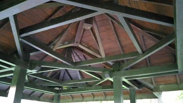 2樹林IPE案例--雙亭部分 --屋頂架構 (5).jpg