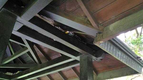 2樹林IPE案例--雙亭部分 --屋頂架構 (6).jpg