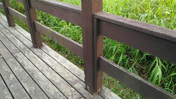 3樹林IPE案例--平台與欄杆 (3).jpg
