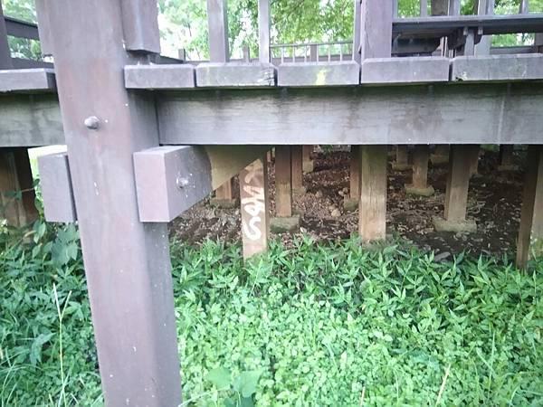 3樹林IPE案例--平台與欄杆 (4).jpg
