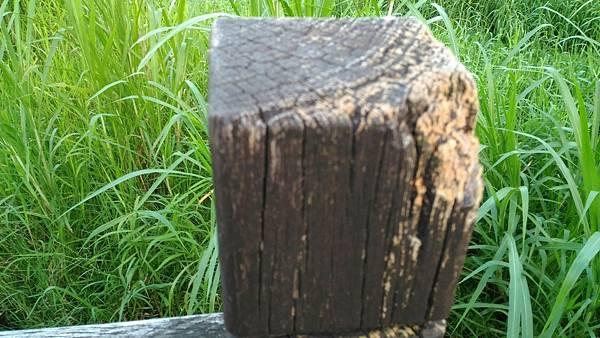 8樹林IPE案例--使用行為檢討 (4).jpg