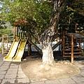 20030207涼山瀑布_36.jpg