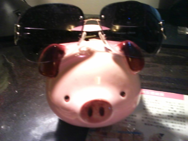 Pig&SunGlasses