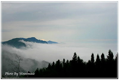 sea of cloud-1.jpg
