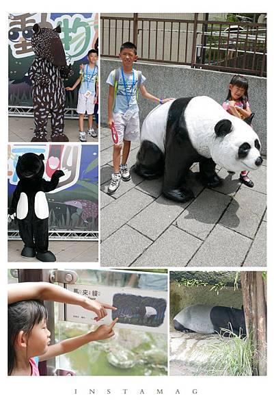 跟著《酷老師逛動物園》