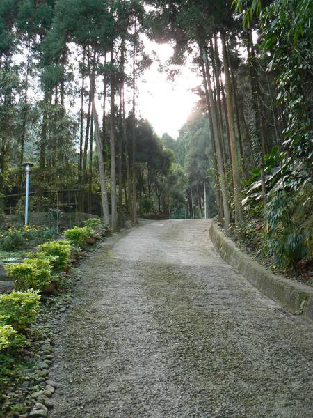 南庄獅頭山國家風景區的小木屋