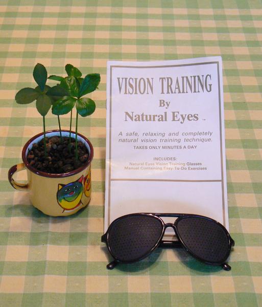 自然視力練習眼鏡
