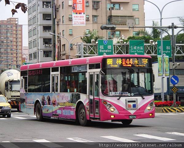 藍44 (樹林-捷運永寧站)