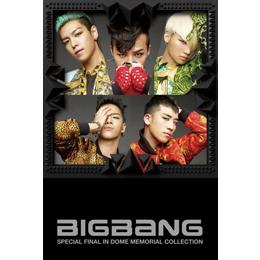 cover_bigbang_jp_dome_d