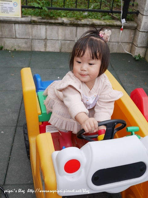 霏霏開車開得很開心