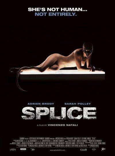 splice_ver6.jpg