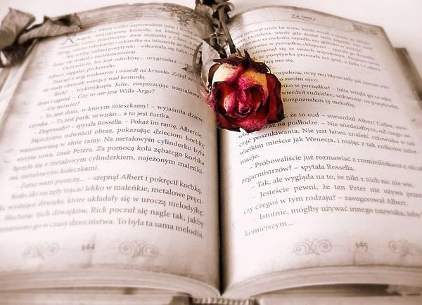 book-419589_960_720