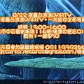 nizo-110621-birthday-2