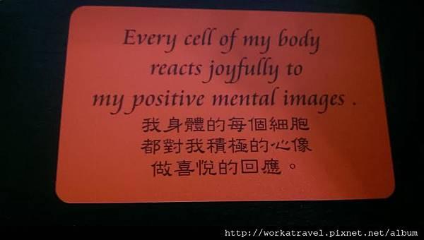 我身體的每個細胞