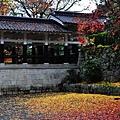 091117_e_京都南禪寺_024.JPG