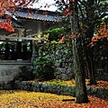 091117_e_京都南禪寺_046.JPG