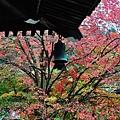 091117_e_京都南禪寺_066.JPG