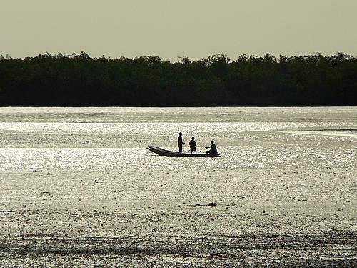 Saloum Delta _Senegal_01.jpg