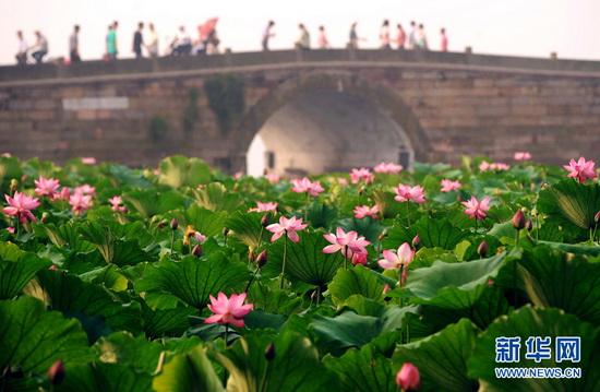 中國西湖09.jpg