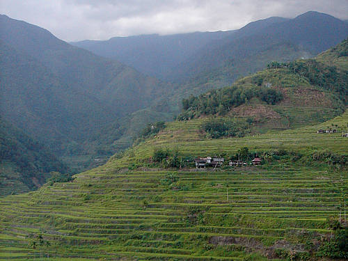 Rice Terraces of the Philippine Cordilleras 1201
