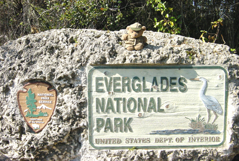 EvergladesNationalPark_US_1001.jpg