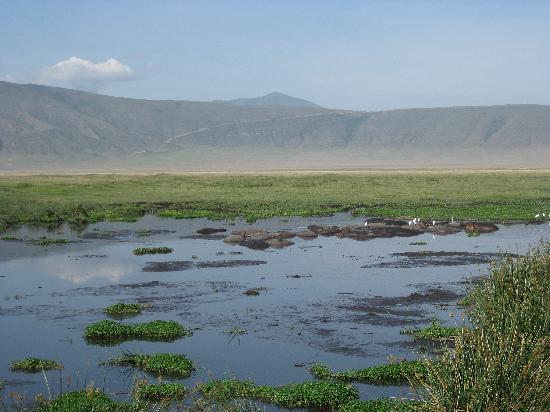 Ngorongoro_Tanzania_01.jpg