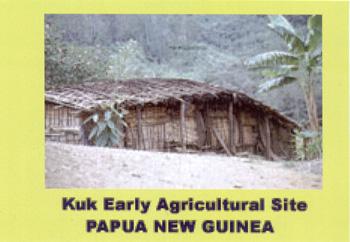 Kuk_PapuaNewGuinea_03.jpg