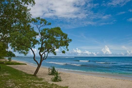 ChiefRoiMatasDomain_Vanuatu_09.jpg