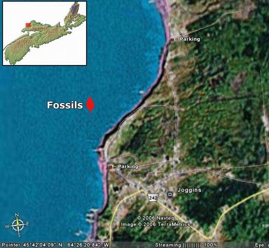 Joggins_Fossil_Cliffs_Canada_00.jpg