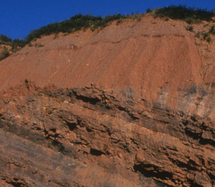 Joggins_Fossil_Cliffs_Canada_04.jpg